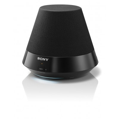 SANS310 Sony