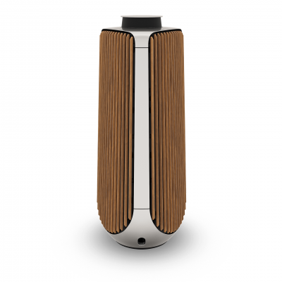BeoLab 50 Silver (Master)