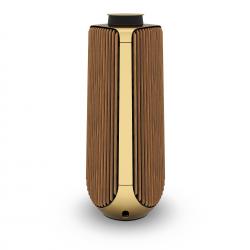 BeoLab 50 Brass Tone (Master)