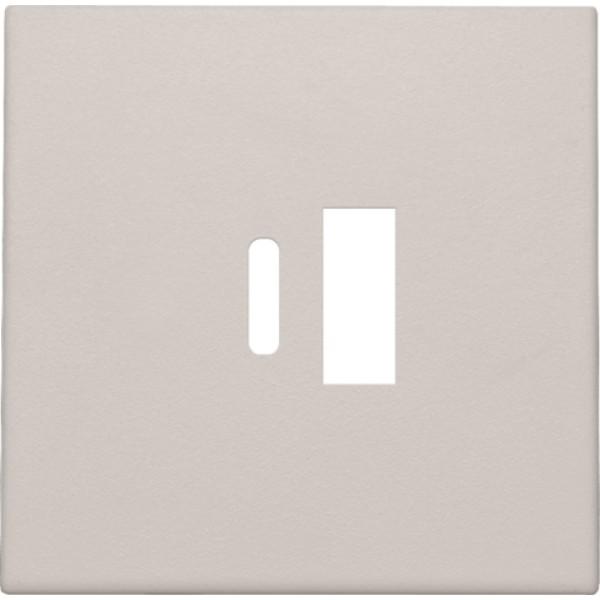 Afwerkingsset voor dubbele smart USB-A en USB-C-lader, light grey