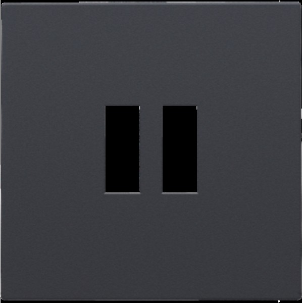 Afwerkingsset voor dubbele USB-A-lader, anthracite