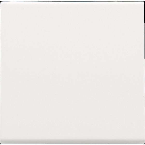 Afwerkingsset voor elektronische schakelaar of drukknop, white coated
