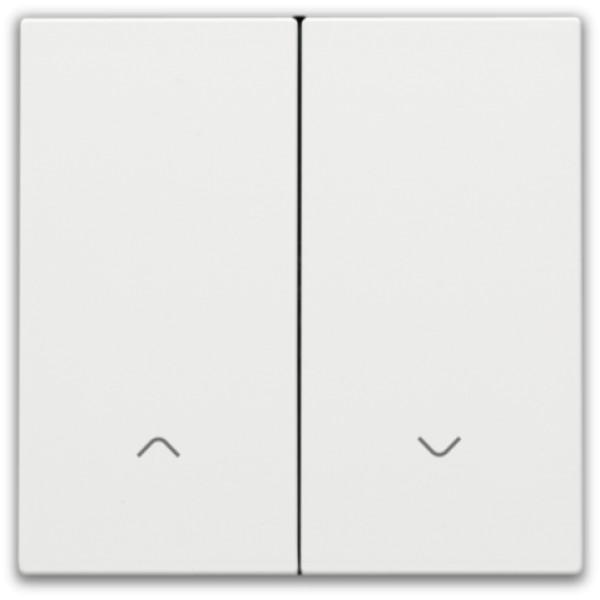 Afwerkingsset voor dubbele elektronische rolluikschakelaar, white coated