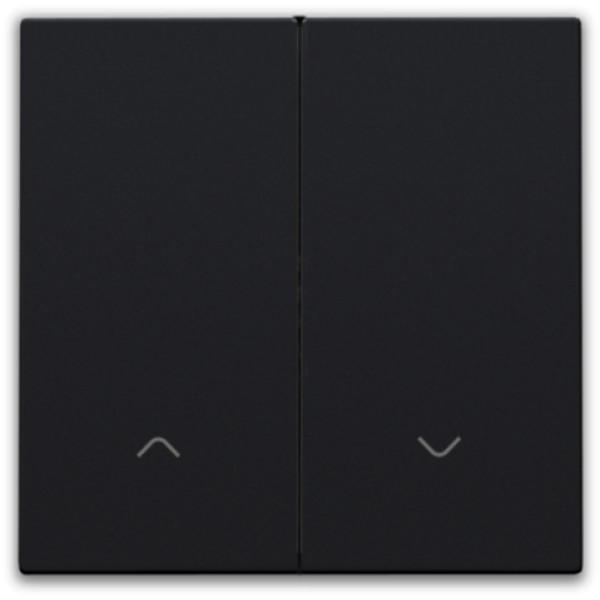 Afwerkingsset voor dubbele elektronische rolluikschakelaar, black coated