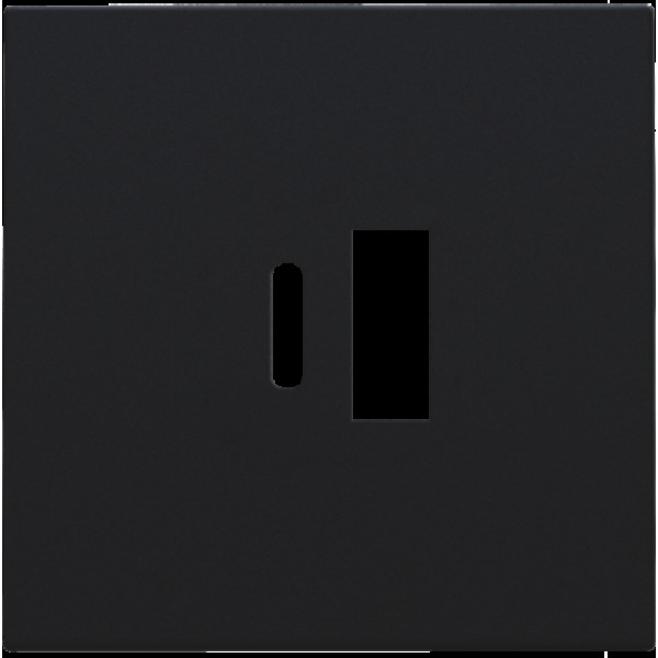 Afwerkingsset voor dubbele smart USB-A en USB-C-lader, black coated