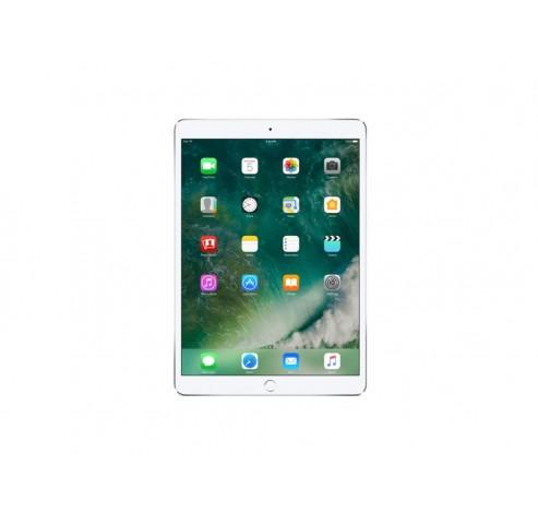 12,9-inch iPad Pro 256GB (WiFi) - Zilver  Apple