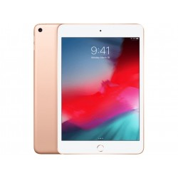 iPad Mini WF CL 256GB Goud