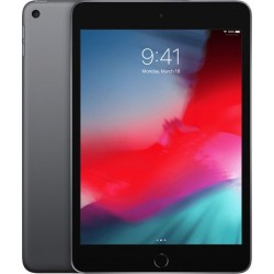 iPad Mini Wi-Fi 256GB Space Grijs