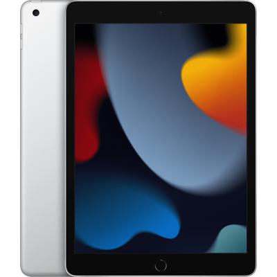 10.2-inch iPad Wi-Fi + Cellular 256GB Silver