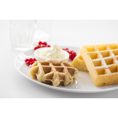 142361 Plates Waffles of Brussels/Liège 4x6