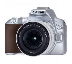 EOS 250D Silver 18-55 S CP Canon