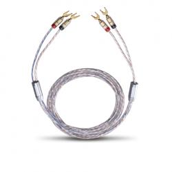 Câble haut-parleur