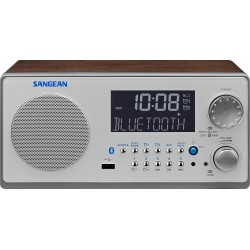 WR-22 houten cabinet radio USB BT walnoot