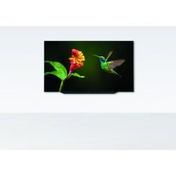 Bild 7.65 OLED
