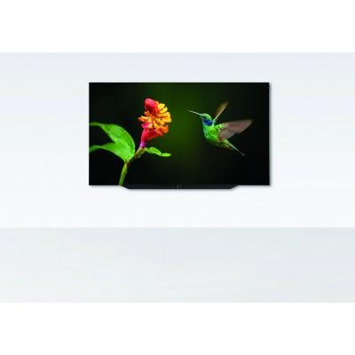 Bild 7.65 OLED Loewe
