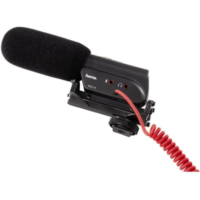 Directed Microphone