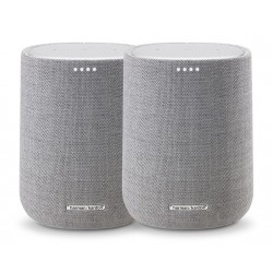 Citation One Grijs Duo  Harman Kardon