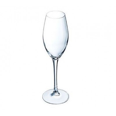 SEQUENCE CHAMPAGNEGLAS 24 CL SET 6  Chef & Sommelier