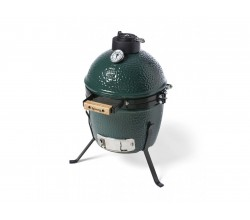 Nest Mini Big Green Egg