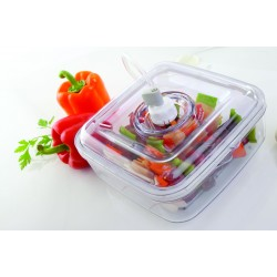 Marinadebox FoodSaver