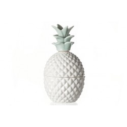 ANANAS BOX WIT-GROEN PORSELEIN Cosy @ Home