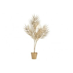 SIERPLANT IN POT BAMBOO LEAF GOUD 12X12X  Cosy @ Home