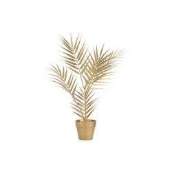 SIERPLANT IN POT BAMBOO LEAF GOUD 11X11X  Cosy @ Home