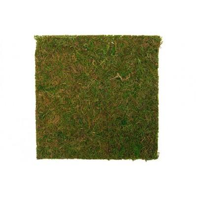 GRASS GROEN 30X30XH,5CM  Cosy @ Home
