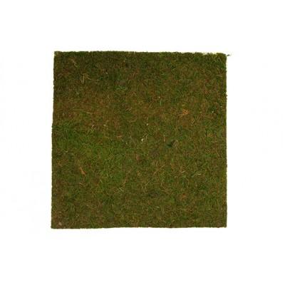 GRASS GROEN 40X40XH,5CM  Cosy @ Home