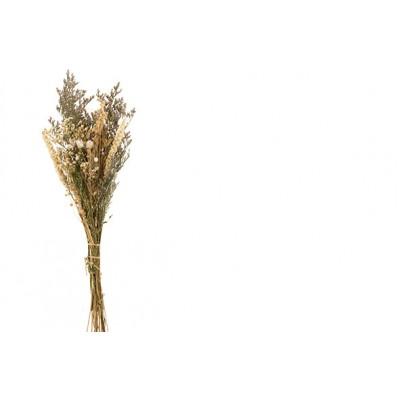 BOEKET DRIED FLOWERS CREME 27X13XH60CM