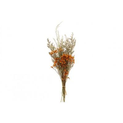 Boeket Dried Flowers Oranje 27x13xh60cm  Cosy @ Home