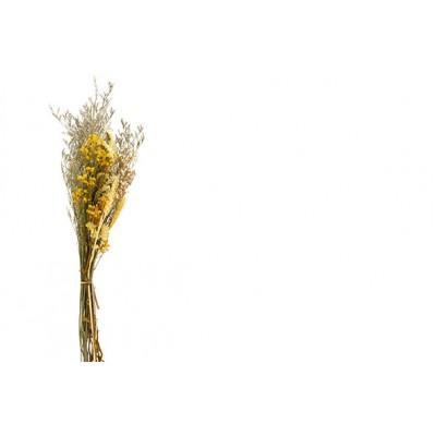 BOEKET DRIED FLOWERS GEEL 27X13XH60CM