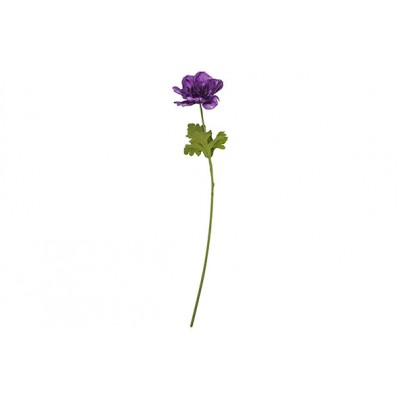 Tak Anemone Stem  Lavendel 8x8xh56cm Kunststof  Cosy @ Home