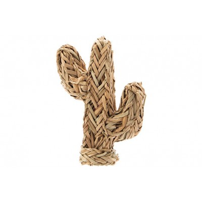 Cactus Standing Natuur 18x8xh22cm Zeegras