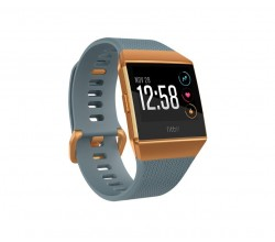 Ionic Slate Blue & Burnt Orange Fitbit