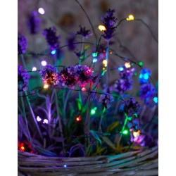 Kerstverlichting Knirke Multi green 40xled