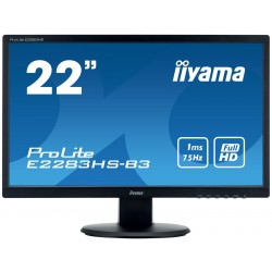 E2283HS-B3  Iiyama